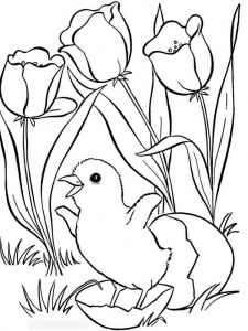 spring-coloring-pages-15