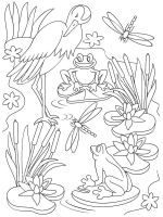 swamp-coloring-pages-15