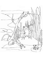 swamp-coloring-pages-3