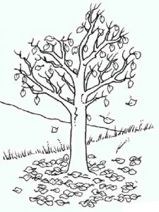 tree-coloring-pages-10