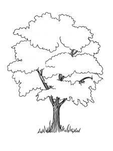 tree-coloring-pages-18