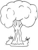 tree-coloring-pages-20