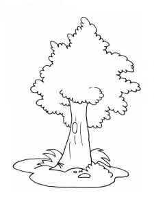 tree-coloring-pages-6