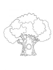 tree-coloring-pages-9