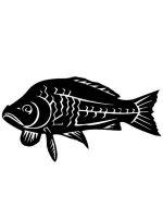 fish-stencils-17
