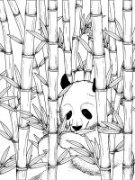 bamboo-coloring-pages-16