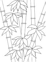 bamboo-coloring-pages-18