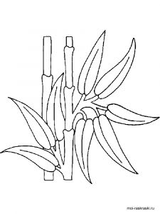 bamboo-tree-coloring-pages-1