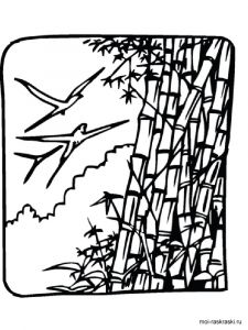 bamboo-tree-coloring-pages-4