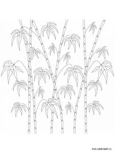 bamboo-tree-coloring-pages-8