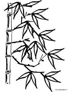 bamboo-tree-coloring-pages-9