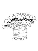 baobab-tree-coloring-pages-10