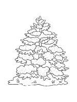 fir-tree-coloring-pages-17