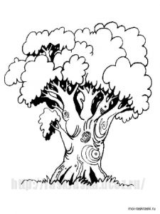 oak-tree-coloring-pages-1