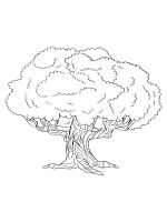 oak-tree-coloring-pages-21