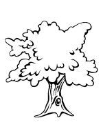 oak-tree-coloring-pages-26
