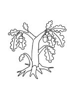 oak-tree-coloring-pages-28