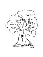 oak-tree-coloring-pages-32