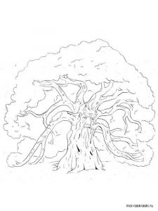 oak-tree-coloring-pages-6