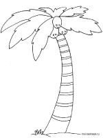 palm-tree-coloring-pages-11