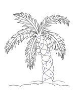 palm-tree-coloring-pages-19