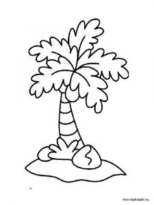 palm-tree-coloring-pages-2
