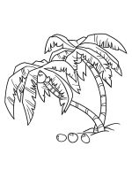 palm-tree-coloring-pages-29