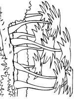 palm-tree-coloring-pages-6