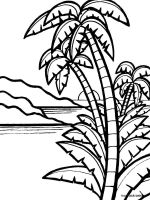 palm-tree-coloring-pages-7