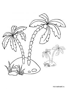 palm-tree-coloring-pages-8