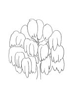 willow-tree-coloring-pages-15